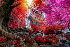 Khlonglan de waterval is mooie Watervallen in de regenwoudwildernis Thailand royalty-vrije stock afbeeldingen