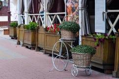 KHMELNITSKY, UKRAINE - JULY 29, 2017: Street Cafe on the central. KHMELNITSKY, UKRAINE - JULY 29, 2017: Greenery Stock Photo