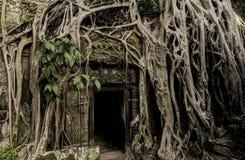 Khmer αρχαίος βουδιστικός ναός Prohm Angkor στο δάσος ζουγκλών διάσημο Στοκ εικόνες με δικαίωμα ελεύθερης χρήσης