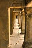 Khmer αρχαίος βουδιστικός ναός Prohm Angkor στο δάσος ζουγκλών διάσημο Στοκ φωτογραφίες με δικαίωμα ελεύθερης χρήσης