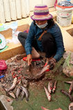 Khmer καθαρισμός γυναικών και ψάρια πώλησης στην αγορά τροφίμων Στοκ Φωτογραφία