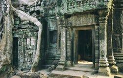 Khmer ναός στο ναό σύνθετο Angkor Wat στην Καμπότζη TR Στοκ Εικόνες