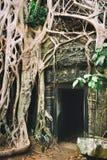 Khmer ναός στο ναό σύνθετο Angkor Wat στην Καμπότζη TR Στοκ Φωτογραφίες