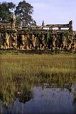 Khmer ruins- Angkor Wat, Cambodia. Royalty Free Stock Photos