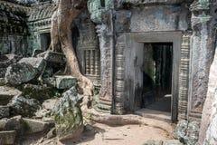 Khmer temple Ta Prohm. Siem Reap, Cambodia Royalty Free Stock Image