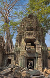 Khmer tower in the jungle Royalty Free Stock Photos