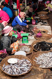 Khmer woman cleaning and selling fish at food marketplace Stock Image