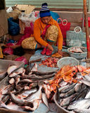 Khmer woman selling fish marketplace. Siem Reap, Cambodia Royalty Free Stock Photography