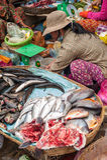 Khmer woman selling fish marketplace. Siem Reap, Cambodia Royalty Free Stock Photos