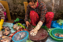 Khmer woman selling fish marketplace. Siem Reap, Cambodia Royalty Free Stock Photo