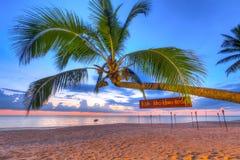 在日落的可可椰子树在酸值Kho Khao海岛上 库存照片