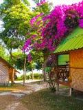 Kho Lipe, Satun, Thaïlande - 7 février 2011 : Maisons de plage tropicales en Thaïlande Photos stock