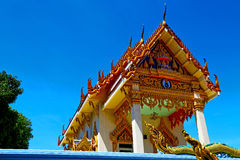 Kho samui bangkok   in thailand incision of the buddha plant. Kho samui bangkok in thailand incision of the buddha gold  temple Stock Photo
