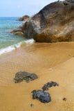 Kho samui   bay asia isle white  beach  tree   china sea Stock Photo