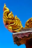 Kho   thailand incision of the buddha gold  temple Stock Photography