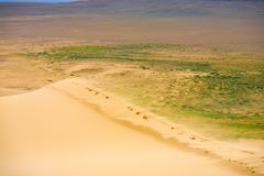 Khongor Els Dune Sand Blowing Top Edge Mongolia Royalty Free Stock Photography