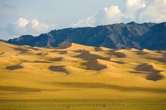 Khongor Els Sand Dune Gobi Desert Mongolia Royalty Free Stock Image