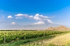 Khor Virap ed il monte Ararat Fotografia Stock Libera da Diritti