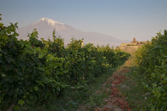 The Khor Virap monastery with Ararat mountain. Stock Image