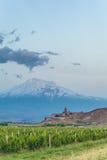 Khor Virap and Mount Ararat. Grape field in Ararat valley. View of Khor Virap and Mount Ararat Stock Photo