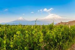 Khor Virap and Mount Ararat. Grape field in Ararat valley. View of Khor Virap and Mount Ararat. Exploring Armenia Stock Photography