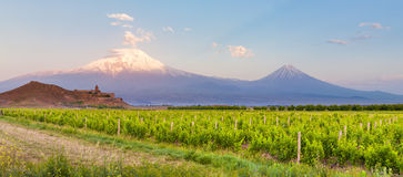 Khor Virap and Mount Ararat. Grape field in Ararat valley. View of Khor Virap and Mount Ararat. Exploring Armenia Stock Images