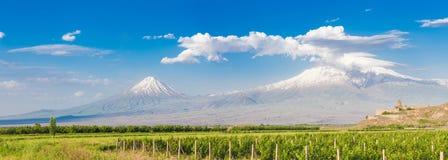 Khor Virap and Mount Ararat. Grape field in Ararat valley. View of Khor Virap and Mount Ararat. Exploring Armenia Stock Photos