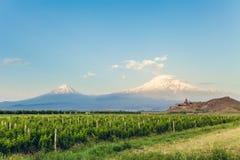 Khor Virap and Mount Ararat. Grape field in Ararat valley. View of Khor Virap and Mount Ararat. Exploring Armenia Stock Image