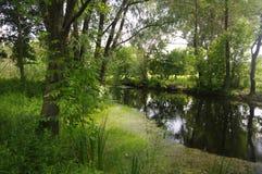 Khorol rzeka w lecie Fotografia Stock