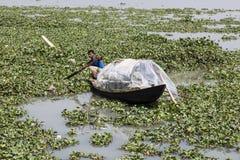 Khulna, Bangladesh, el 28 de febrero de 2017: Sirva el rowing con un pequeño barco de madera en un río por completo de plantas ac fotografía de archivo libre de regalías
