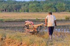 Khunpepe034. Nakhon Si Thammarat, Thailand - FEBRUARY 18, 2011 : Unidentified farmer plows the paddy field using tiller tractor to prepare the soil before the Royalty Free Stock Photo