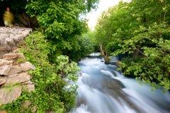 Khurmal Forrest和在自治库尔德斯坦伊拉克的山的河急流 库存照片