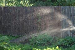Kiść woda przy drewnianym ogrodzeniem gdy nawadniający ogród obrazy stock