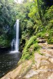 Kiate nedgångar i Tauranga Arkivfoto