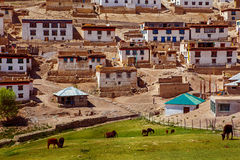 Kibber village in Himalaya mountains Stock Photography