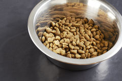 Kibble dog or cat food in bowl Stock Image