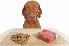 Kibble or natural dog food Royalty Free Stock Photos