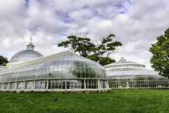 Kibble Palace, Glsgow, Scotland, UK Stock Photos
