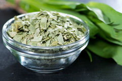 Kibbled Ramson Royalty Free Stock Image