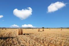 Kibbutz field Stock Photo