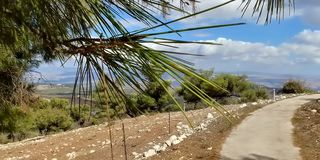 Kibbutzer Malkia Royaltyfri Fotografi