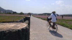 Kibi Prosta Rowerowa trasa Obrazy Stock