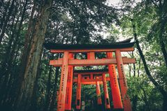 Kibitsuï ¼ ŒThousands av denna akademiker, Japan royaltyfri foto