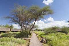 Kibo Safari Camp, Kenya Royalty Free Stock Photography