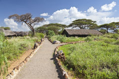 Kibo Safari Camp, Kenya, editorial Stock Photos