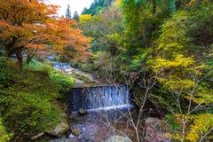 Kibune,在秋天期间的京都 免版税库存照片