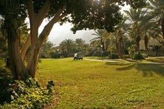 KIbutz Ein Gedi - oaza w Judejskiej pustyni Izrael Zdjęcia Stock