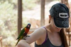 Kibutz Nir David, Israël, 10 Juni, 2017: De papegaai zit op de hand van een jonge vrouw bij de Australische Dierentuin Gan Guru i Royalty-vrije Stock Afbeelding