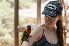 Kibutz Nir David, Israel, June 10, 2017 : Parrot sits on the hand of a young woman at the Australian Zoo Gan Guru in Kibbutz Nir D Royalty Free Stock Image