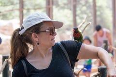 Kibutz Nir David, Israel, o 10 de junho de 2017: O papagaio senta-se na mão de uma jovem mulher no jardim zoológico australiano G Fotografia de Stock Royalty Free